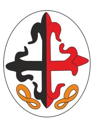 Escudos 8