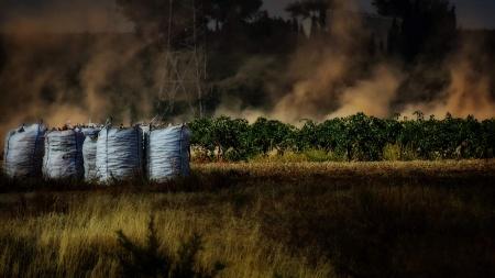 'La gran polvisca', de Sebastián Estévez ha sido galardonada con el primer premio local