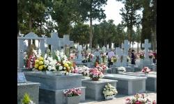 Vista del cementerio municipal de Manzanares