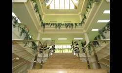 Escalera de acceso a las salas de adultos