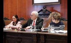 Julián Nieva en el pleno de enero de 2020