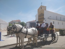 Divina Pastora 2019