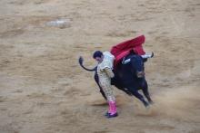 Tarde de seguridad en los toros de Manzanares