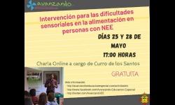 Charla 'Intervención para las dificultades sensoriales en la alimentación de personas con NEE'