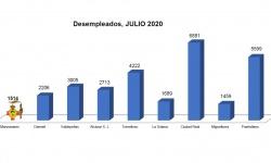 Número de desempleados (julio 2020)