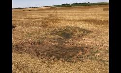 Zona agraria en la que se ha localizado una de las averías