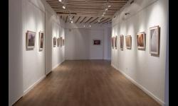 Abierta al público la exposición fotográfica de socios de la Asociación Fotográfica 'Manzanares'