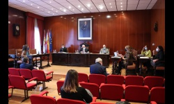 Pleno ordinario (octubre 2020)