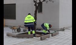 Personas trabajando en Manzanares